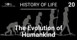The evoltion of humankind