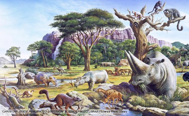 The Neogene Period- The First Modern Mammals 2
